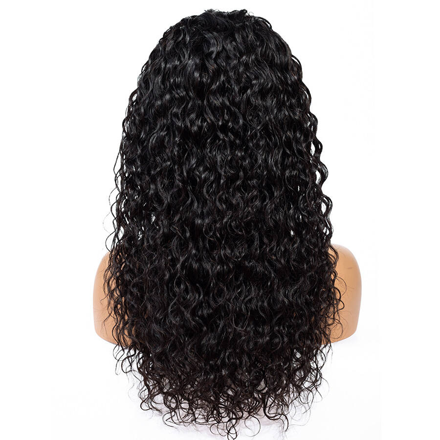Water Wave Lace Wig Back